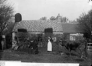 Myrddin Fardd - Mother and Home of John Jones (Myrddin Fardd), Llanbedrog, c.1885