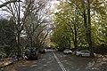 Mount Wilson NSW 2786, Australia - panoramio (31).jpg