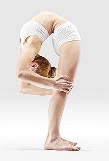 220px Mr yoga reverse facing intense stretch  2 yoga asanas Liste des exercices et position à pratiquer