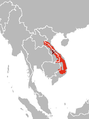 Muntiacus vuquangensis distribution 1 .png