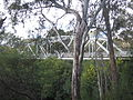 MurchisonBridge1.JPG