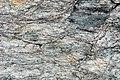 Muscovite schist (Appalachian Gap, Green Mountains, Vermont, USA) 4.jpg