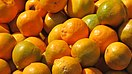 Nagpur orange article.JPG