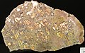 Native copper pods in garnet-pyroxene skarn (Madison Gold Skarn Deposit, Late Cretaceous, 80 Ma; west of Silver Star, Montana, USA) 7.jpg