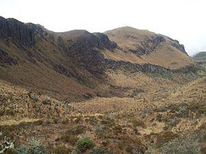 Northern Andean páramo - Landscape in Nevado del Ruiz, Colombia