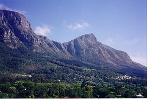 Newlands, Cape Town - View of upper Newlands and Devil's Peak from Bishops Court