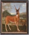 Nicasius Bernaerts - Ganges deer.tiff