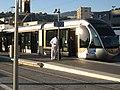 Nice tram 2008 06.jpg
