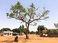 Niger, Niamey, Boulevard de la Nation (Rue YN-34)(3).jpg