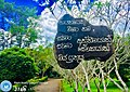 Nilwala national college of education.jpg