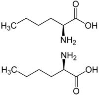 Norleucin.png