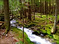 North Cascades National Park (9292796310).jpg