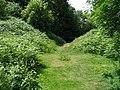 North Gate, Midsummer Hill Fort, Hollybush - geograph.org.uk - 20942.jpg