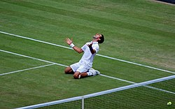 Novak Djokovic celebrates his 2011 Wimbledon semi-final win over Jo-Wilfried Tsonga. Victory meant that Djokovic successfully clinched the ATP world no. 1 ranking for the first time in his career on 1 July 2011. He also reached his first ever Wimbledon final, which he eventually won.