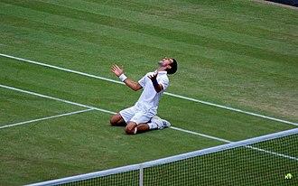2011 Novak Djokovic tennis season - Djokovic at Wimbledon