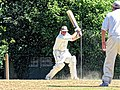 Nuthurst CC v. Henfield CC at Mannings Heath, West Sussex, England 013.jpg