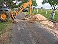 Oak Wilt Treatments on LBJ Ranch (3e084111-530a-46b4-8325-4ec221e4a9e2).jpg