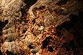 Ochtina Aragonite Cave 01.jpg