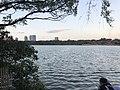 Ohori Park 20180801.jpg