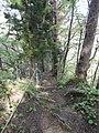 Okuse, Towada, Aomori Prefecture 034-0301, Japan - panoramio (6).jpg