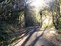 Old bridge abutments on the Deerness Valley Path - geograph.org.uk - 323220.jpg