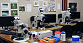 Optical Microscope Center for Biofilm Research MSU.jpg