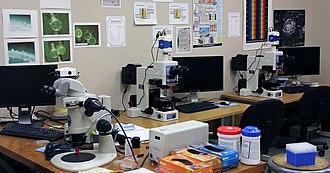 Center for Biofilm Engineering - Optical microscopy laboratory