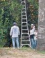 Orange Pickers on Terracina, Redlands, CA 1-12 (6727025975).jpg
