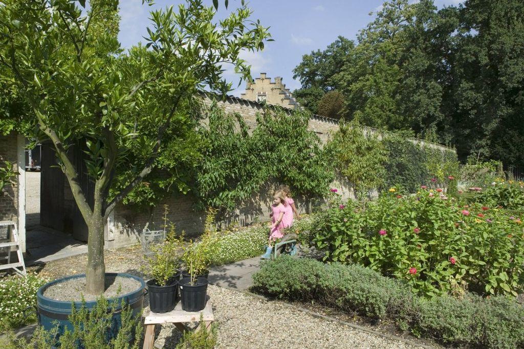 File overzicht tuin gezien vanaf de ingang van de kas perk met bloemen muur met leifruit - Muur van de ingang ...