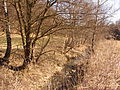 PP Údolí Velké Hané (16).JPG