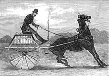 A carriage pulled by a horse that opens his mouth wide and seems to have frozen in place