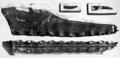 PZSL1851PlateReptilia04.png