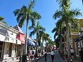 Palm Tree Lined Front Street Shops (6545978013).jpg