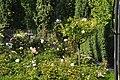 Parc de Bercy - Roseraie 002.JPG