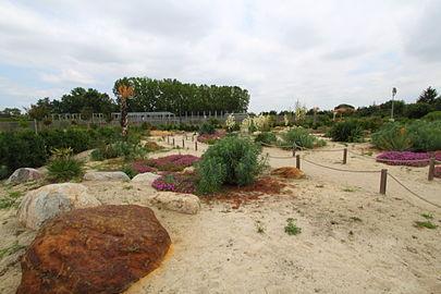Mus um de toulouse wikip dia - Restaurant jardin des plantes toulouse ...