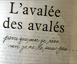 Image illustrative de l'article L'Avalée des avalés