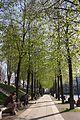Paris 19e Bassin de la Villette 505.jpg