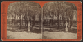 Park of Grand Union Hotel, Saratoga, N.Y, by Hall Bros..png