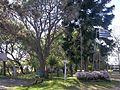 Parque que rodea el Centro Agustín Ferreiro.JPG