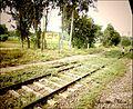 Parsipur.jpg