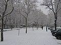 Paseo de la Castellana (Madrid) 40.jpg
