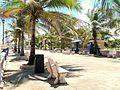 Paseo las Damas in2 - Arecibo Puerto Rico.jpg