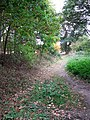 Path to Easthill Lane - geograph.org.uk - 1532711.jpg