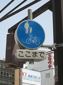 PedestrianBikePathJapan