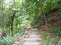 Penang Botanical Gardens - panoramio.jpg