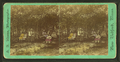 People sitting on benches in a park, by Adams, S. F., 1844-1876.png