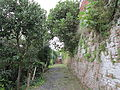 Percorso sentieristico sotto le Mura Medievali Ovest, 18.JPG