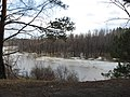 Pervomaysky District, Tomsk Oblast, Russia - panoramio (16).jpg