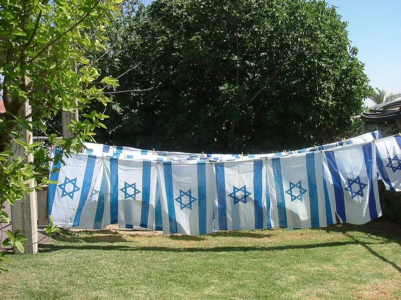 כביסת  דגלים
