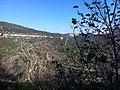 PikiWiki Israel 29693 Steph Path.jpg